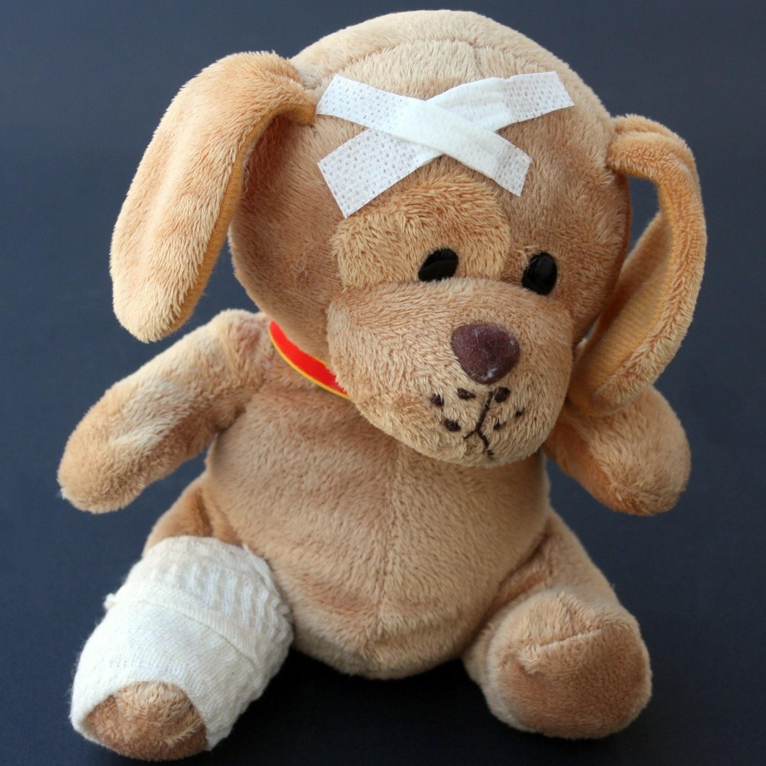 Hund_Tierarzttraining